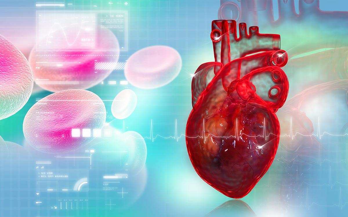 Αορτοστεφανιαία Παράκαμψη Thorax Heart