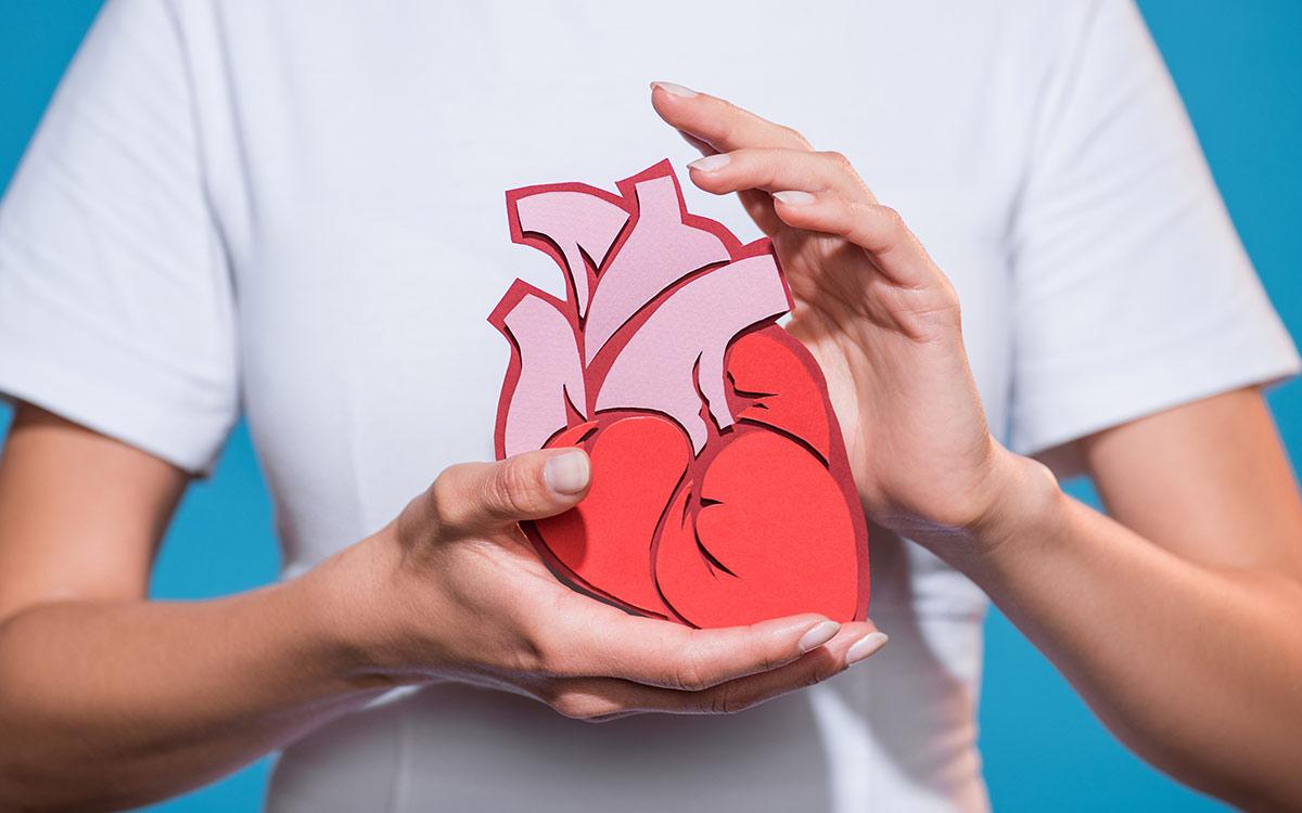 Γυναίκα κρατάει χάρτινη καρδιά, Thorax Heart Καρδιοχειρουργικό τμήμα
